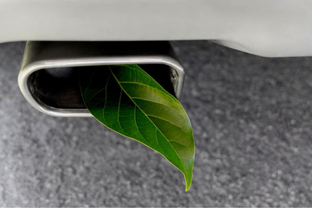 Auto uitlaat met blad