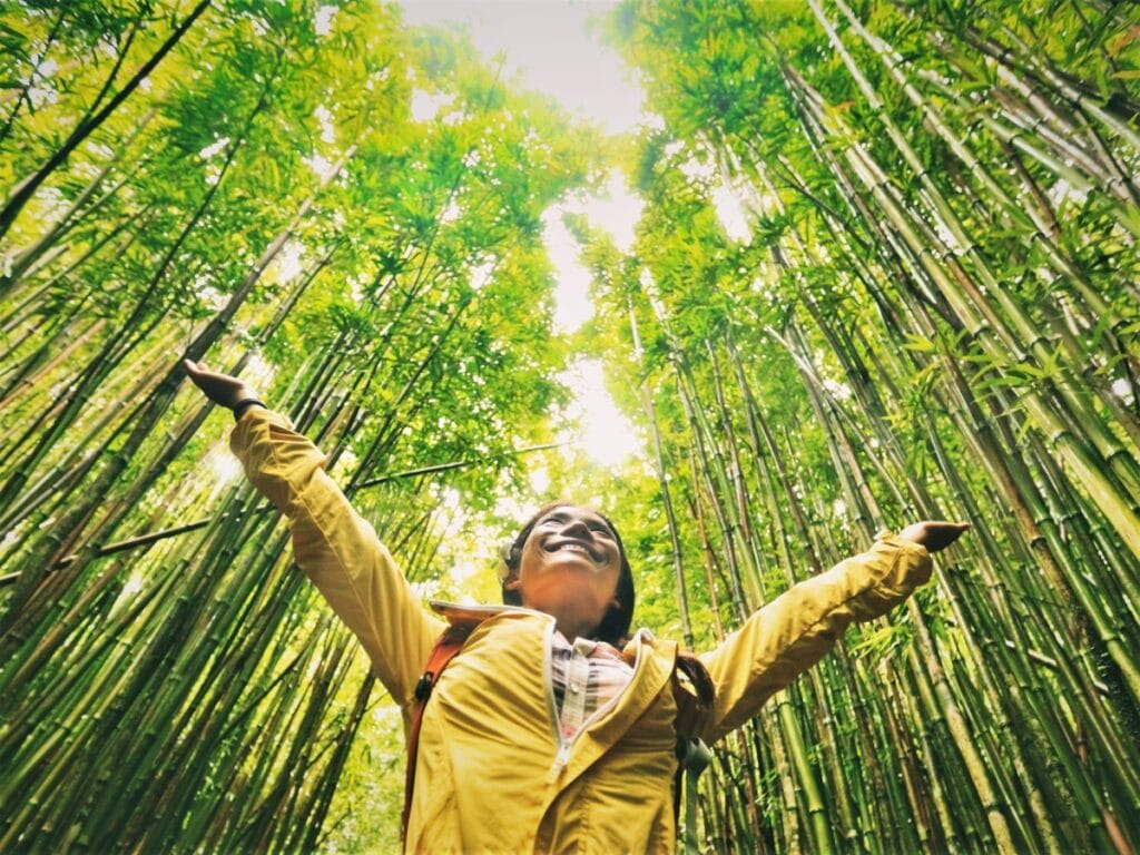 Sustainable,Eco-friendly,Travel,Tourist,Hiker,Walking,In,Natural,Bamboo,Forest
